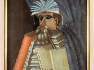 o-bibliotecario